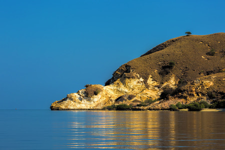 komodo: Isola di Komodo