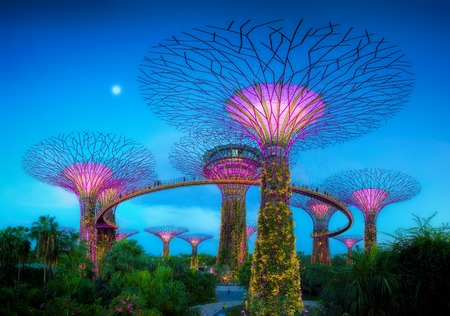 singapore: Gardens By The Bay Editorial