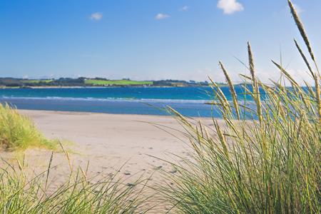 sola: Norwegian beach near Stavanger city on a sunny day