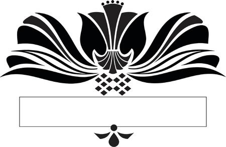scroll design: Scroll design - vector Illustration