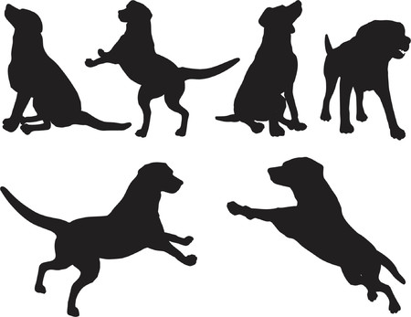 dog run: Dog silhouettes - vector Illustration