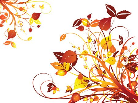 Floral abstract - vector Vector