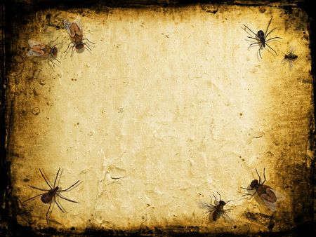 crawlies: Grunge background with spiders and flies