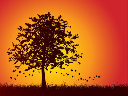 Silhouette of an autumn tree with leaves falling