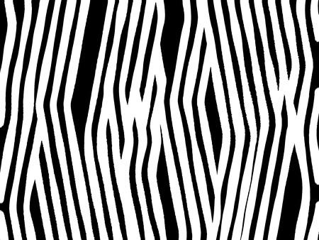 zebra print: Zebra print background Illustration