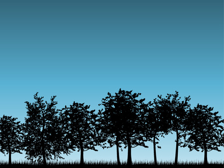 Silhouettes of tree landscapes Vector