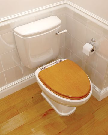 3d render of a classic toilet Stock Photo - 5101357