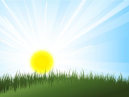 Sun rising over green grass Vector