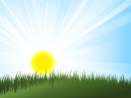 Sun rising over green grass Vector
