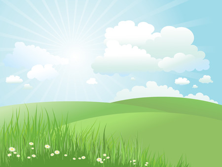 Summer landscape with daisies in grass Stock Vector - 6420514