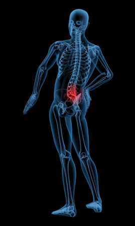 3D render of a skeleton highlighting pain in the back Stock Photo - 7825436