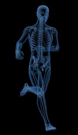 3D render of a skeleton running  photo