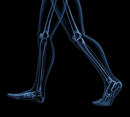 tibia: Skeleton walking Stock Photo
