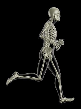 3D render of a medical skeleton in a running pose photo