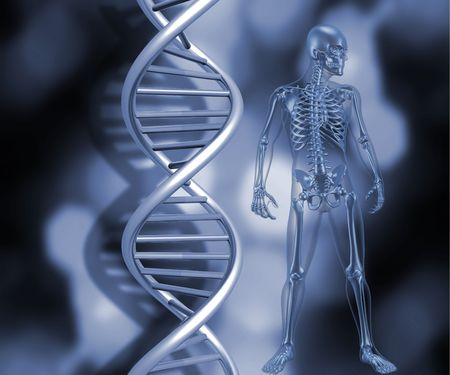 raytrace: 3D render of a medical skeleton stood next to DNA strands Stock Photo