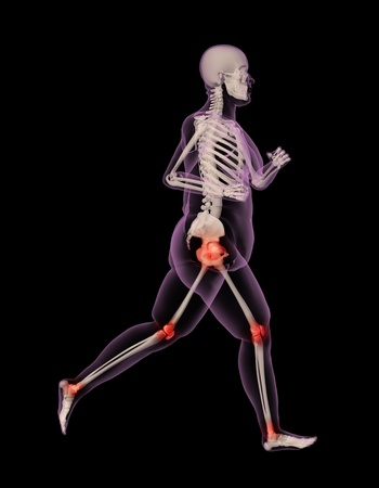 3D render of an overweight female skeleton running showing pressure points on joints photo