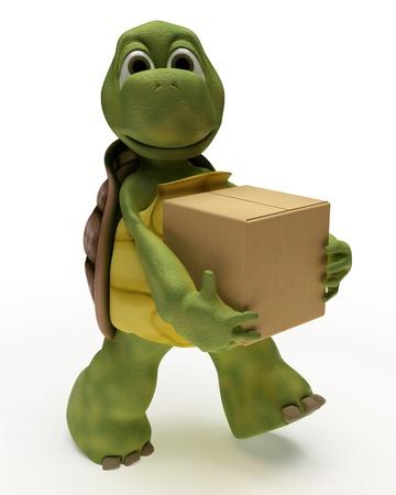 tortuga: Render 3D de una caricatura de tortuga llevar cajas de embalaje