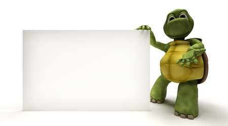 3d render: 3D Render of a Tortoise with a blank white sign