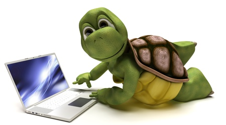 tortoise: 3D render of a Tortoise on a laptop computer Stock Photo