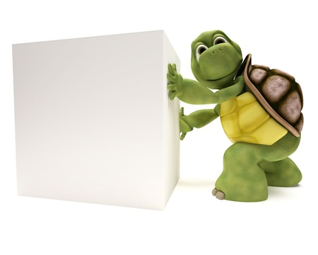 tortoise: 3D Render of a Tortoise with a blank white sign