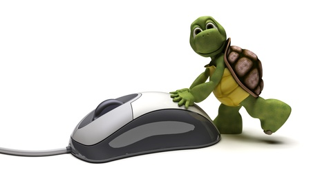 carapace: 3D render of a Tortoise with a computer mouse