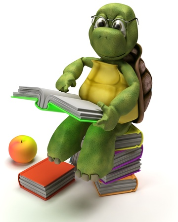 carapace: 3D Render of a Tortoise reading a book