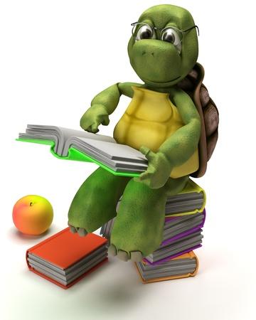 tortuga: Render 3D de una tortuga leyendo un libro