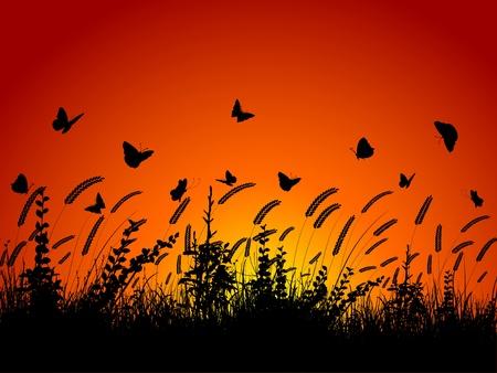 butterflies flying: Silueta de mariposas volando entre trigo y follaje