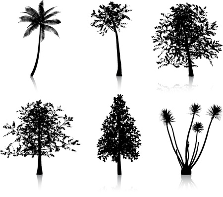 Collection of six different tree silhouettes Vector