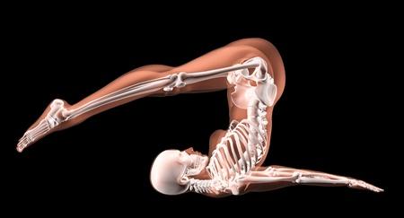 anatomie mens: 3D render van een vrouwelijke medische skelet in een yoga-positie