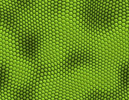 eidechse: Nahtlose Fliese Hintergrund mit einer Eidechse Skin-Effekt