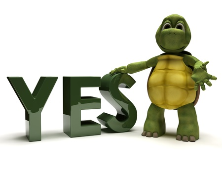 3D render of a tortoise with a yes sign Stock Photo - 9624968