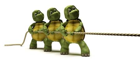 tug o war: Render 3D de tortugas tirando de una cuerda Foto de archivo