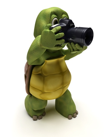 3d render: 3D render of a Tortoise with slr camera