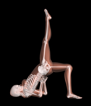 skeleton: 3D render of a female medical skeleton in a yoga position Stock Photo