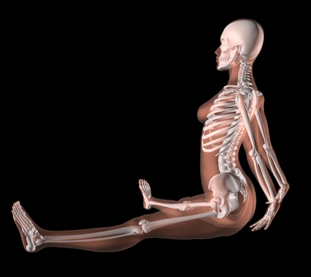 3D render of a female medical skeleton in a yoga position Stock Photo - 10272638