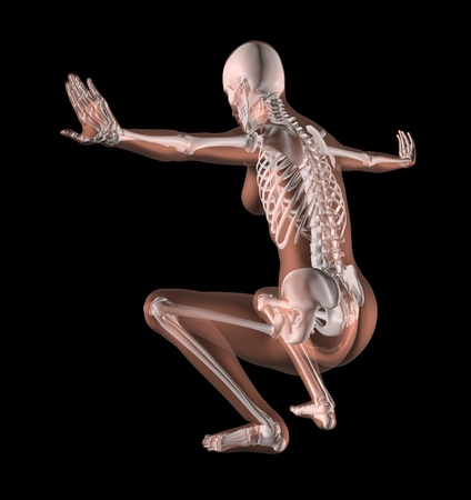 3D render of a female medical skeleton in a yoga position Stock Photo - 10416378