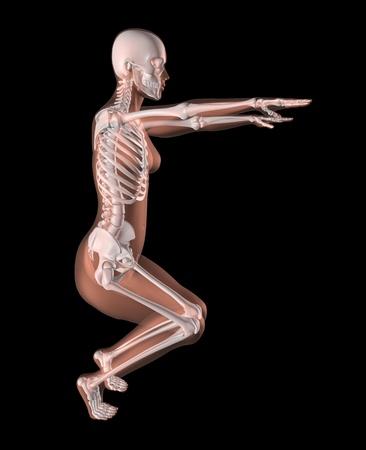 3D render of a female medical skeleton in a yoga position photo