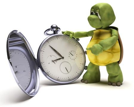 tortuga: Render 3D de una tortuga con un reloj de bolsillo cl�sico Foto de archivo