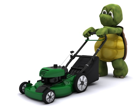 mow: 3D Render of a Tortoise with a lawn mower