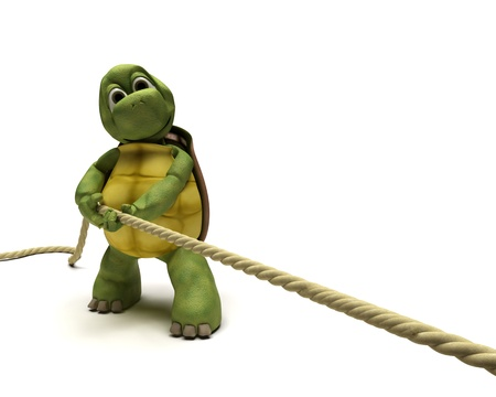 tug of war: 3D render of Tortoise pulling on a rope Stock Photo