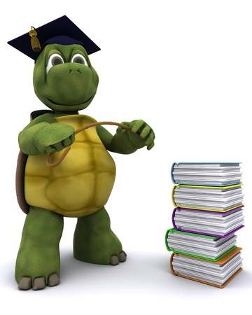 water turtle: 3D render of Tortoise teacher with a stack of books