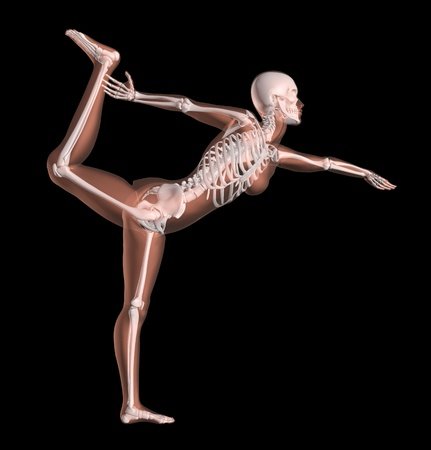 skeleton x ray: 3D render of a female medical skeleton in a yoga position Stock Photo