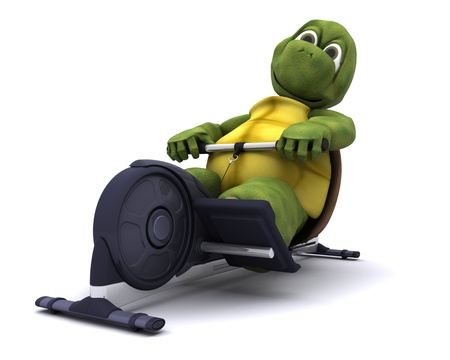 rowing: 3d render of a tortoise training on a rowing machine