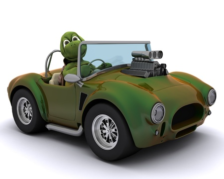 3d render of a tortoise driving a car photo