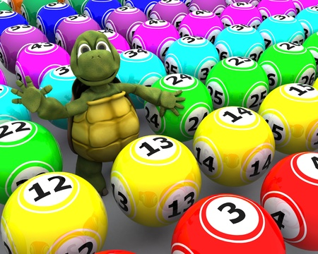 3d render of a tortoise with bingo balls Stock Photo - 11261119