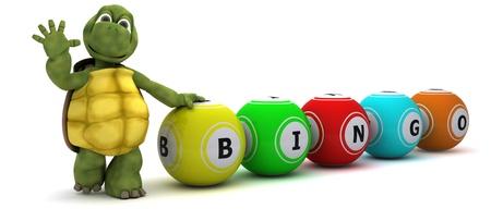 bingo: Render 3D de una tortuga con las bolas del bingo