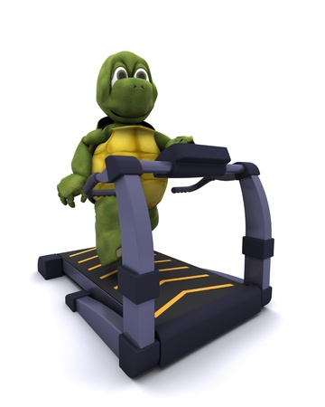 3D Render of a Tortoise running on treadmill Stock Photo - 11863034