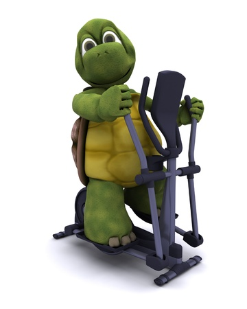 3D Render of a Tortoise with a cross trainer Stock Photo - 11863055