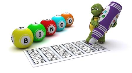 3d render of a Tortoise playing bingo